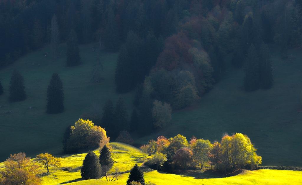 paysage2000